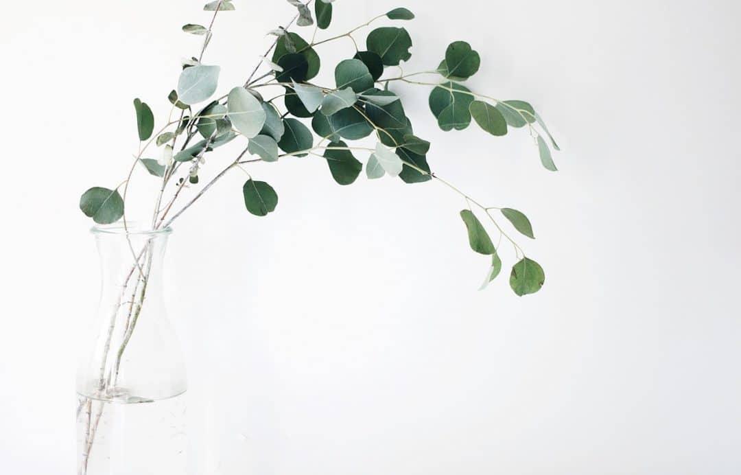 minimalisme ervaring